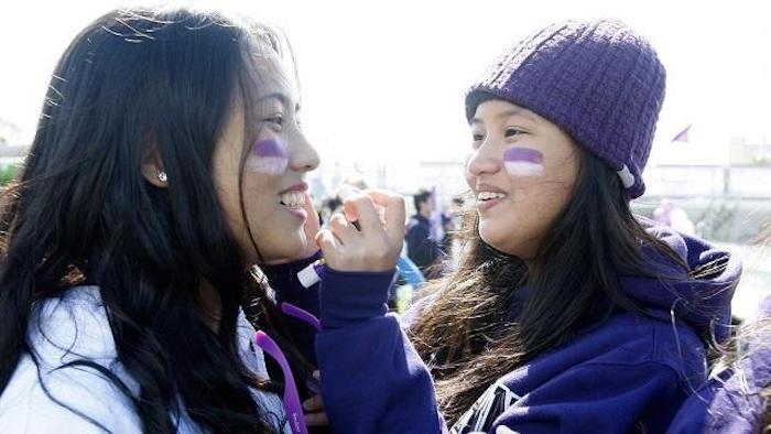 Northwestern-University-Fans1